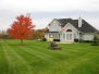 Lawn, Tree and Shrub Care